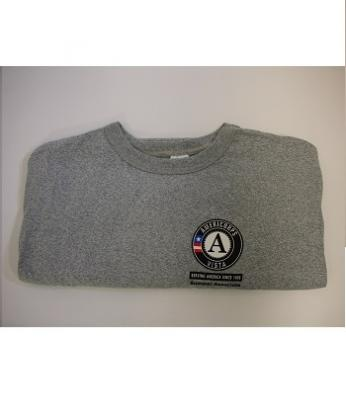 T-Shirts: VISTA Summer Associate (4X) Grey