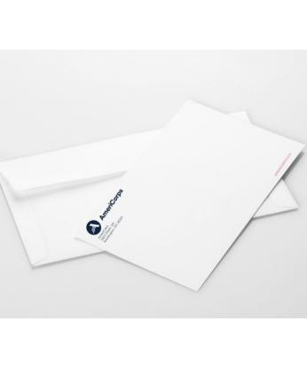 AmeriCorps 9x12 Envelope